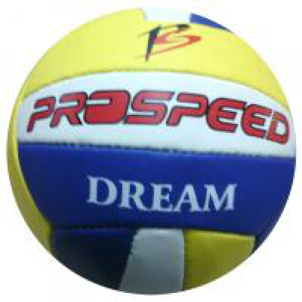 Voleybol Topu Dream Prospeed